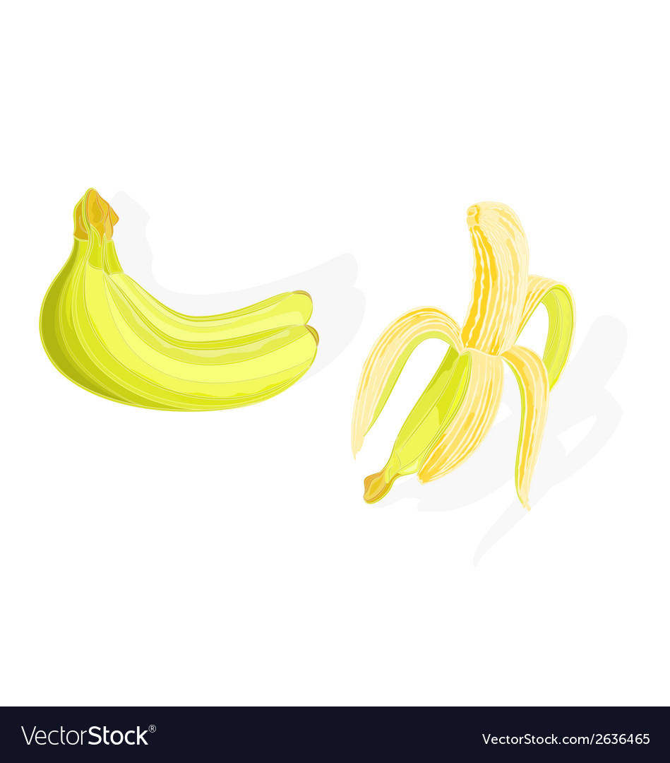 Three bananas and one half-the peeled vector | Price: 1 Credit (USD $1)