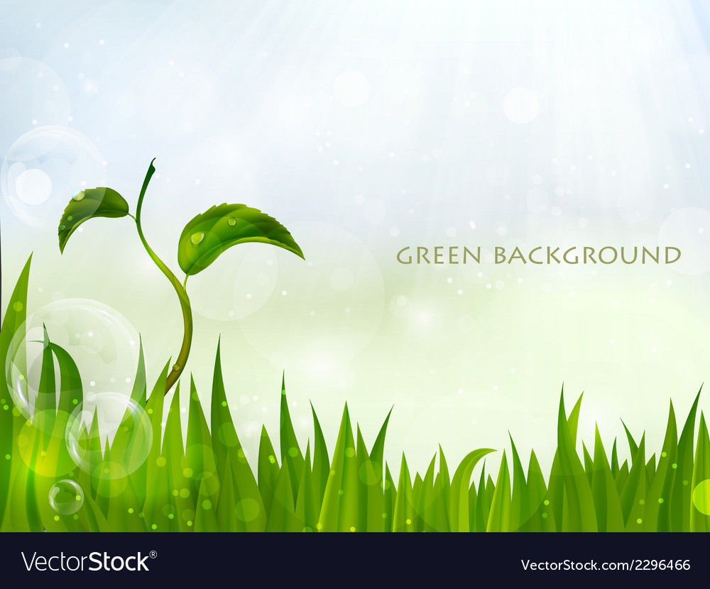 Background of green grass vector | Price: 1 Credit (USD $1)