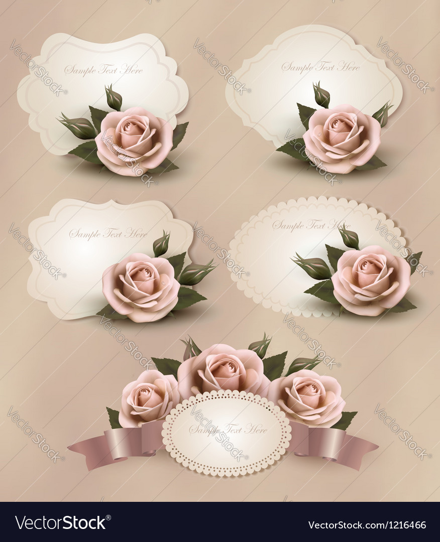 Collection of retro greeting cards with pink rose vector | Price: 1 Credit (USD $1)