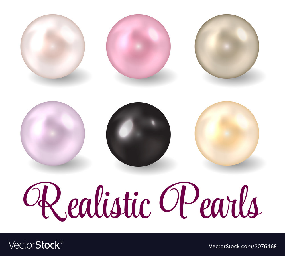 Realistic pearl set vector | Price: 1 Credit (USD $1)