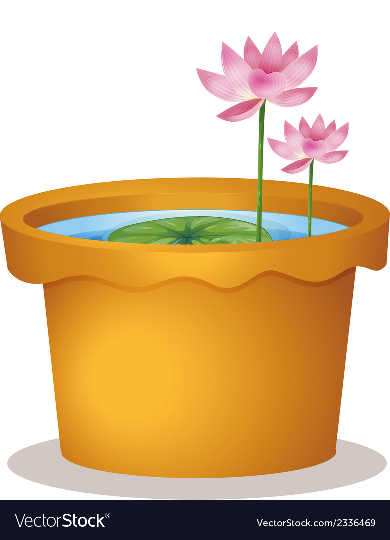 A pot with a waterlily and lotus flowers vector | Price: 1 Credit (USD $1)