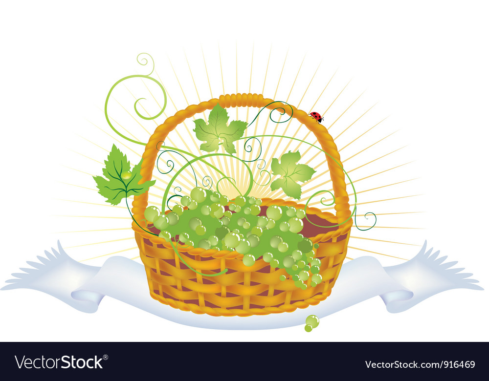 Wicker basket with grape vector | Price: 1 Credit (USD $1)