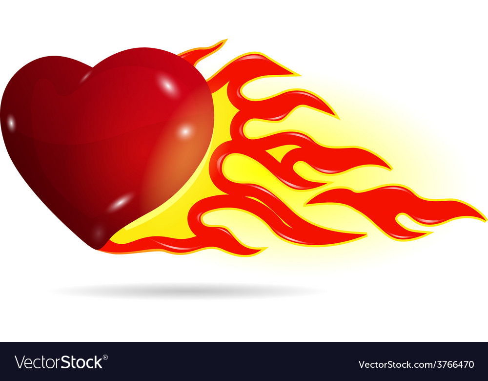 Heart on fire vector | Price: 1 Credit (USD $1)
