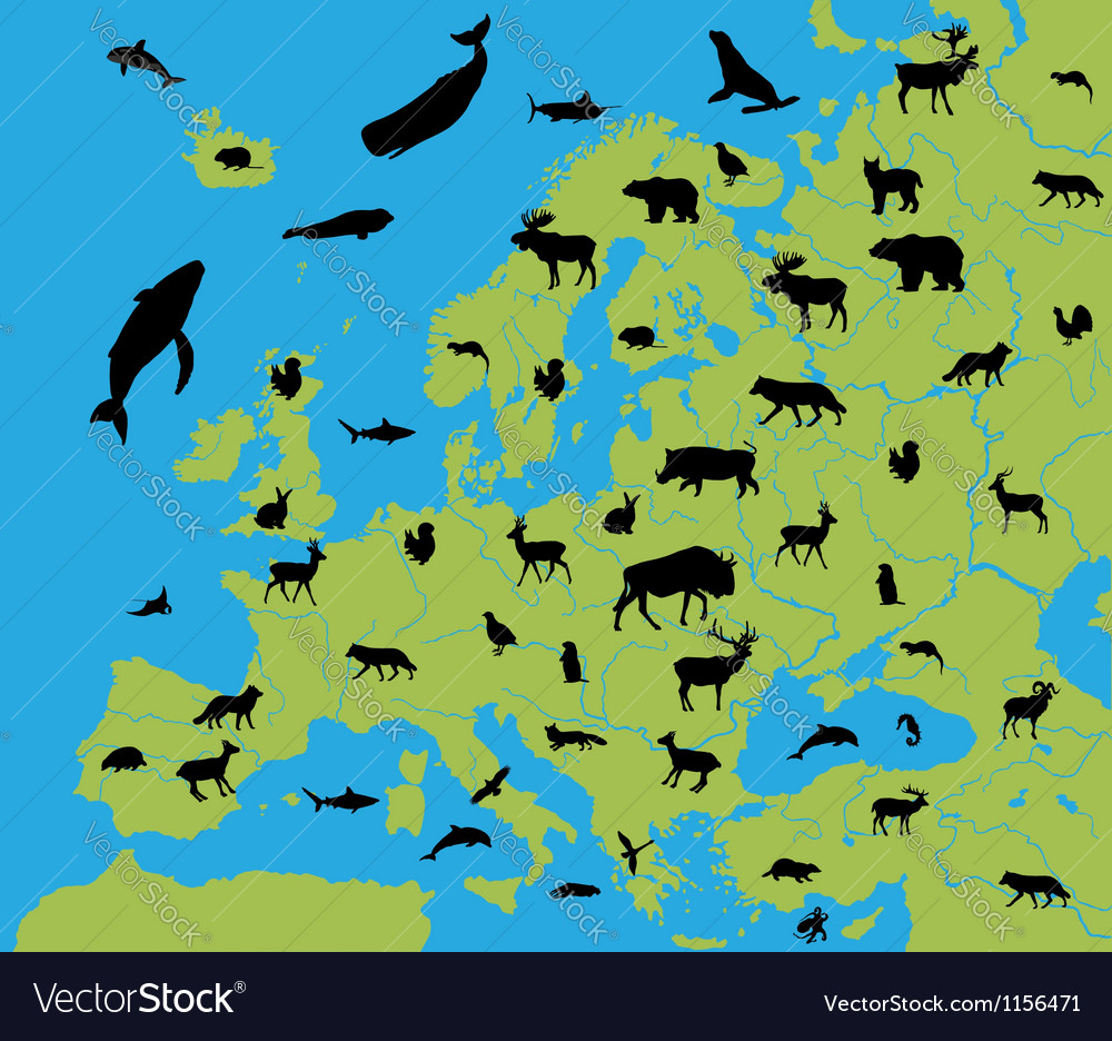 Animals on the map of europe vector | Price: 1 Credit (USD $1)