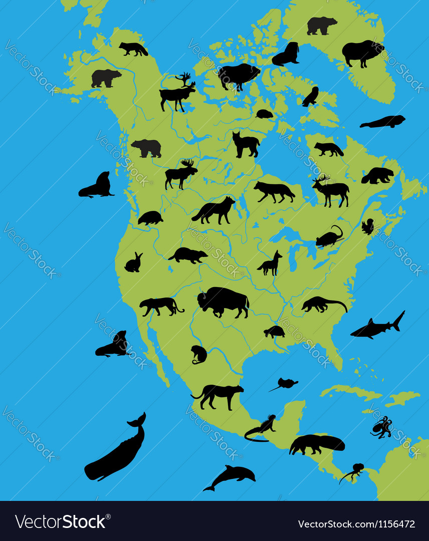 Animals on the map of north america vector | Price: 1 Credit (USD $1)