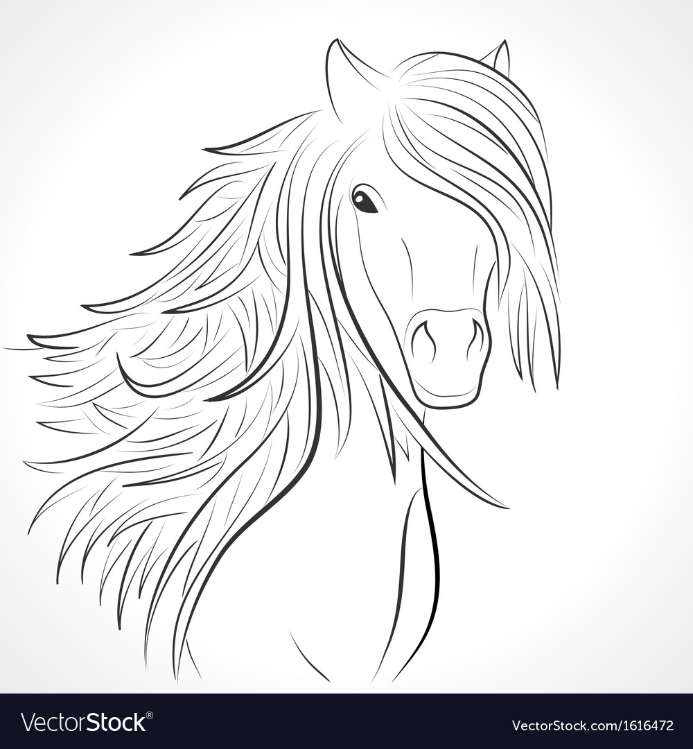 Sketch of horse head with mane on white vector | Price: 1 Credit (USD $1)