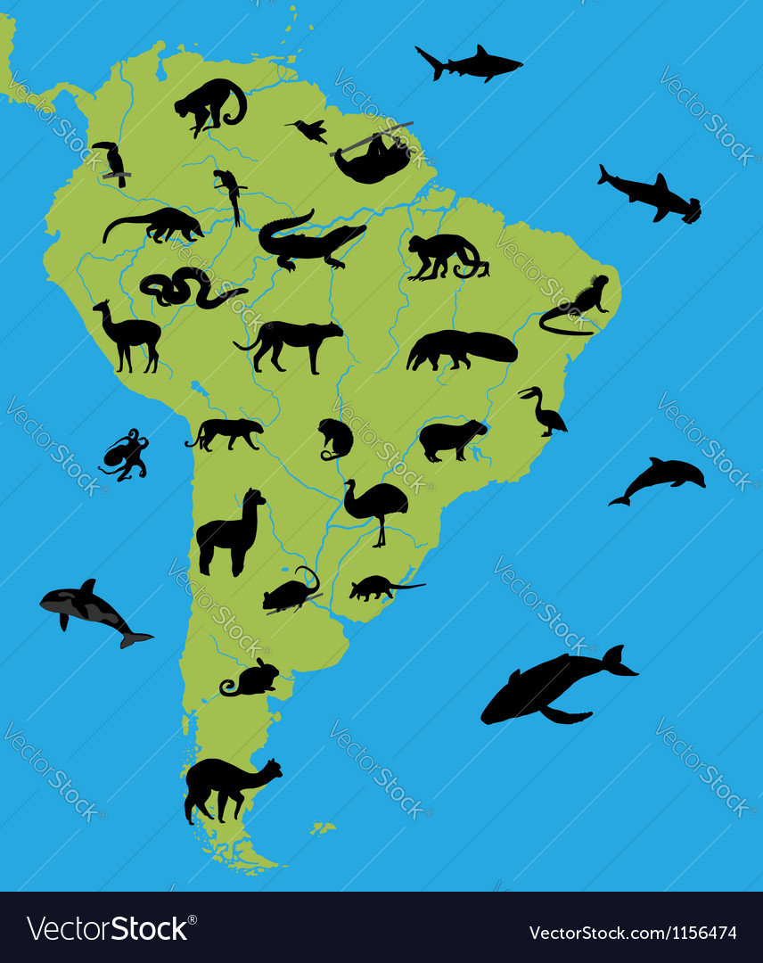 Animals on the map of south america vector | Price: 1 Credit (USD $1)