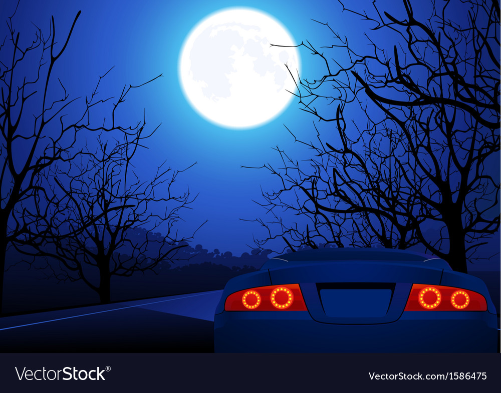Sport car on night road vector | Price: 1 Credit (USD $1)