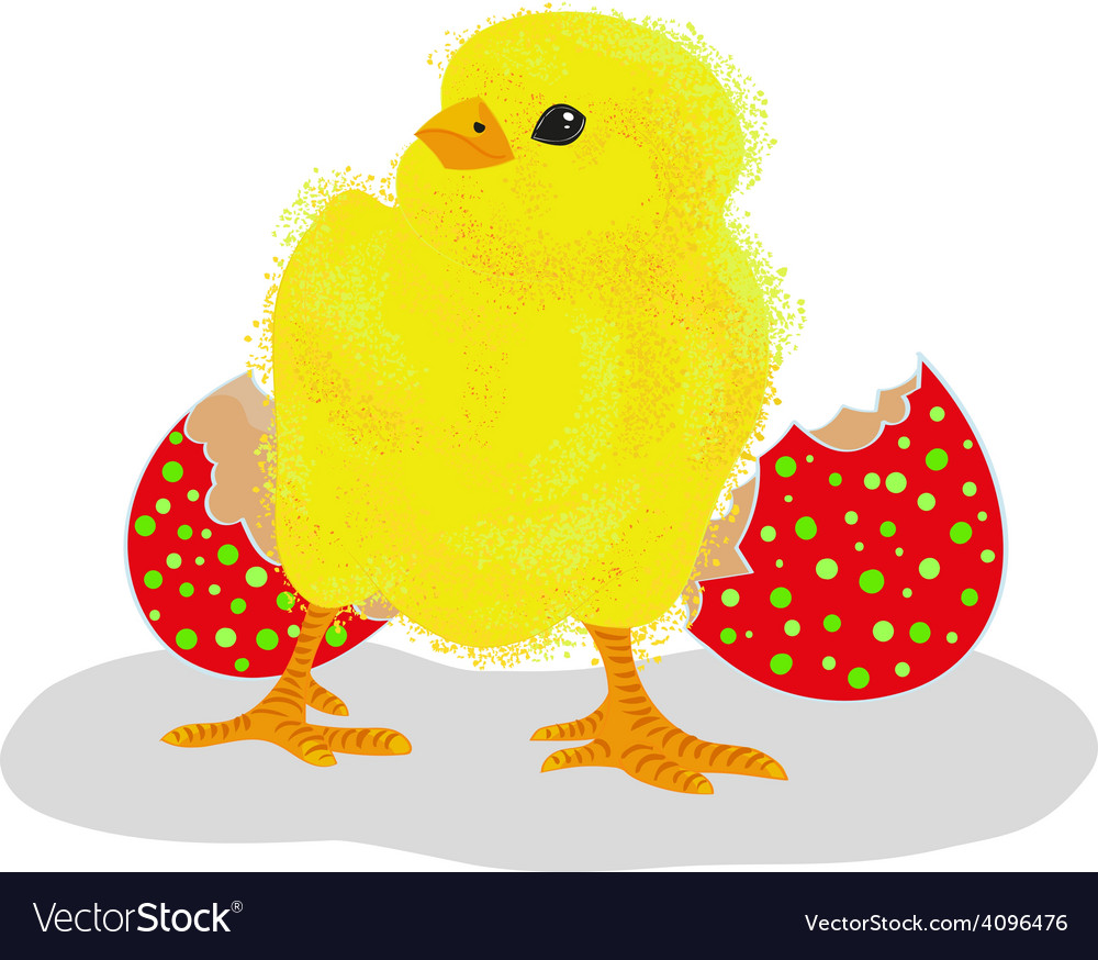 Chicken with a red egg shell vector | Price: 1 Credit (USD $1)