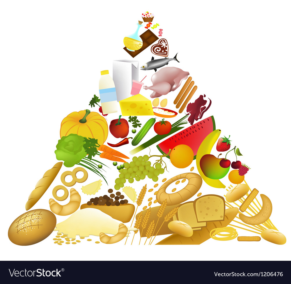 Food pyramid vector | Price: 1 Credit (USD $1)