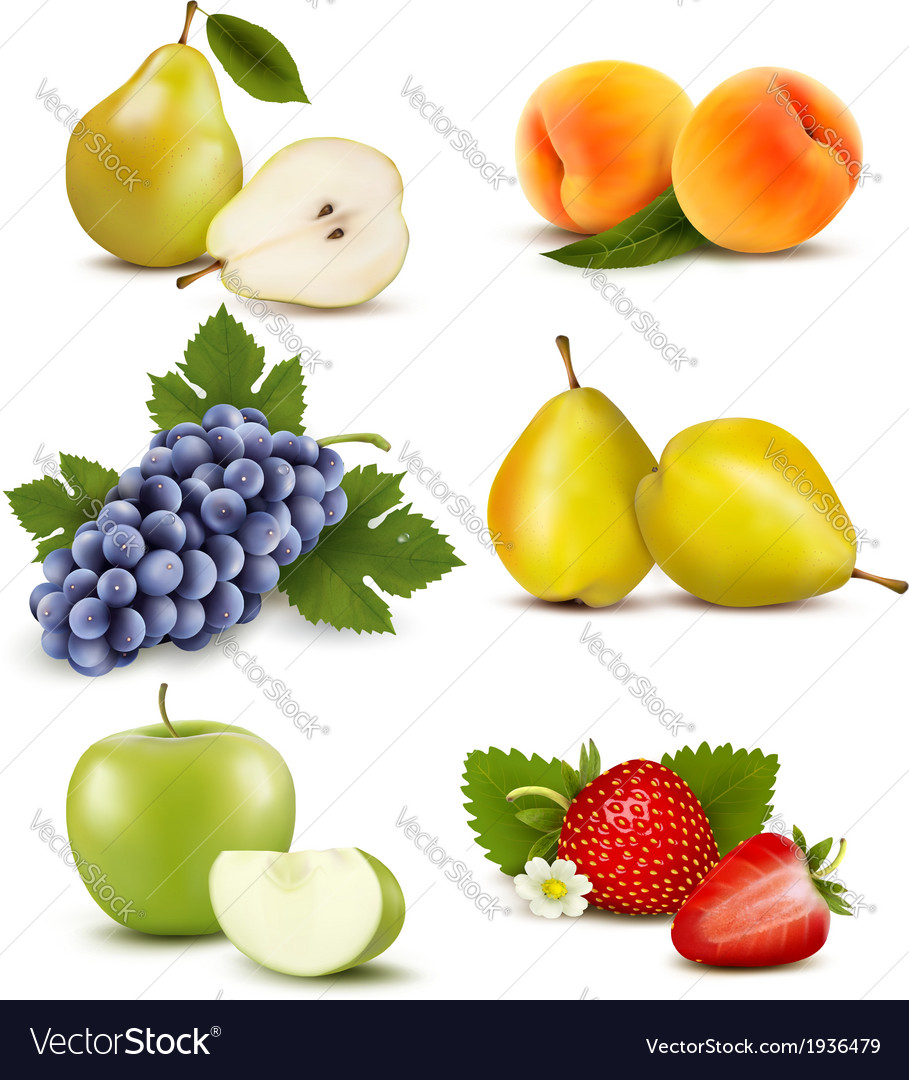Big group of different fruit vector | Price: 1 Credit (USD $1)