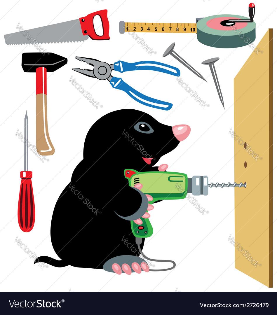 Cartoon mole builder vector   Price: 1 Credit (USD $1)