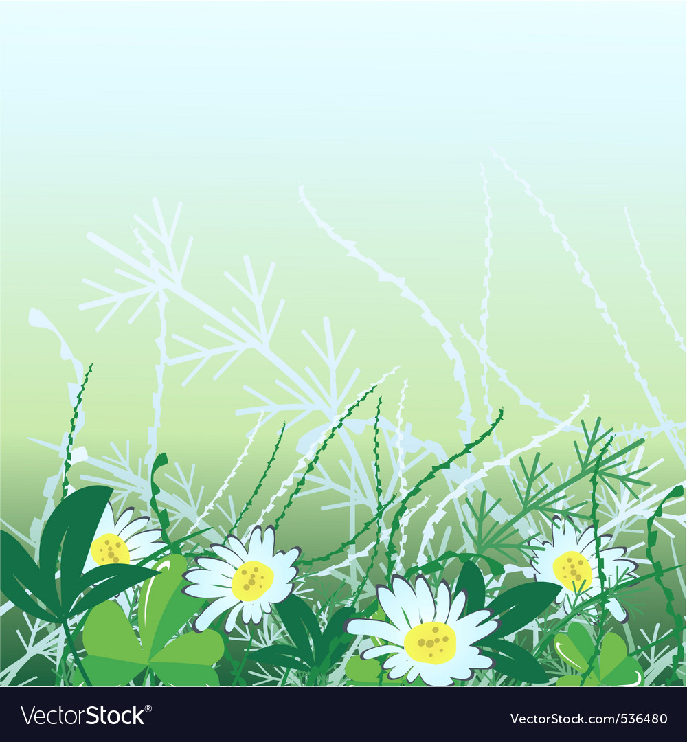 Camomiles in green grass vector illustration vector | Price: 1 Credit (USD $1)