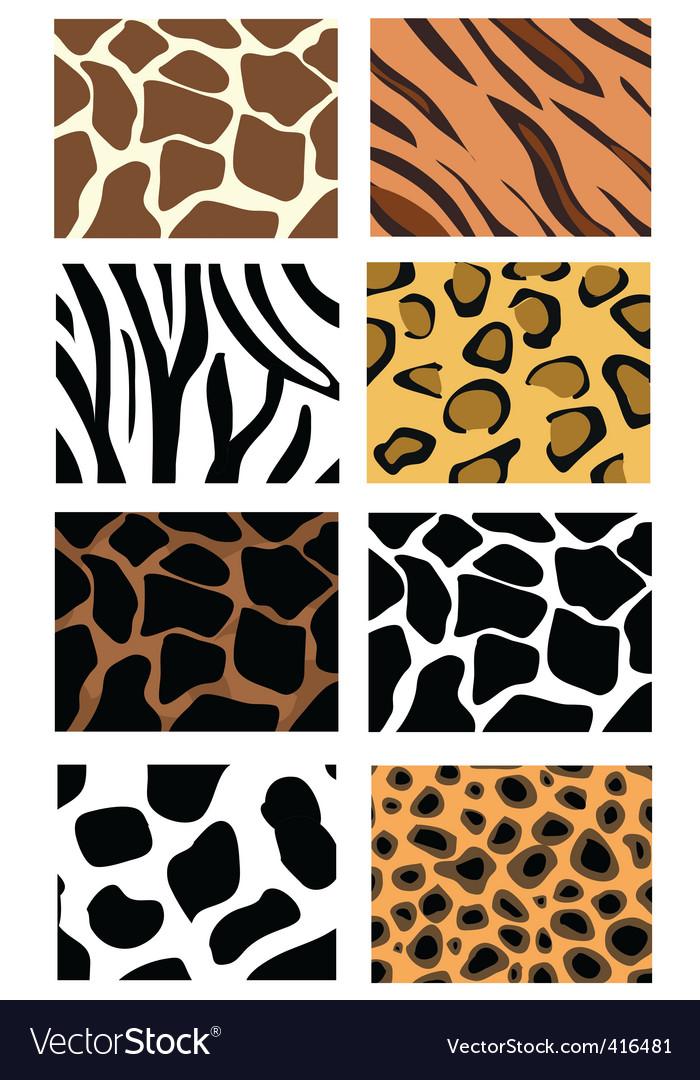 Animal print patterns vector | Price: 1 Credit (USD $1)
