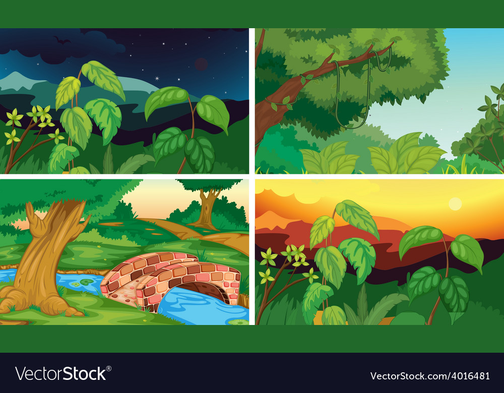 Forests vector   Price: 3 Credit (USD $3)