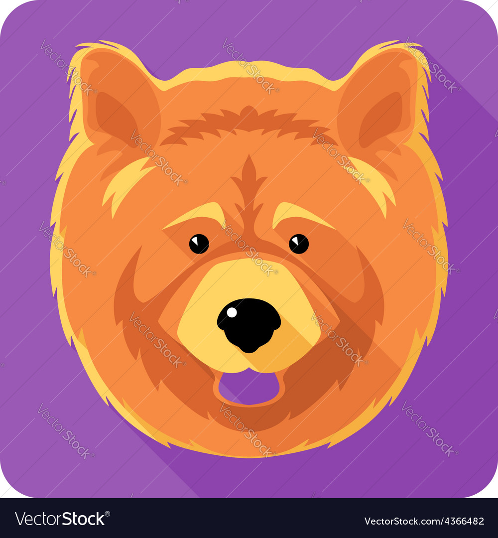 Dog chowchow icon flat design vector