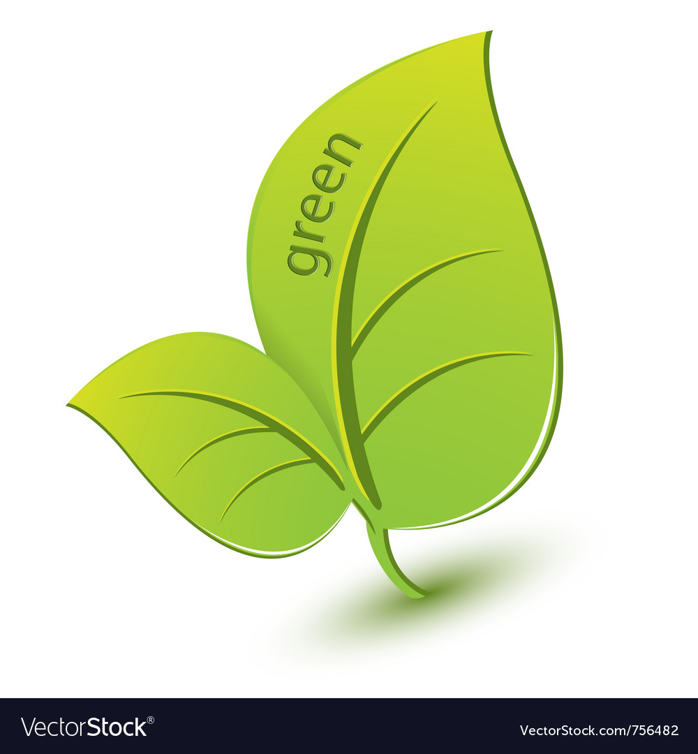 Green leaf vector | Price: 1 Credit (USD $1)