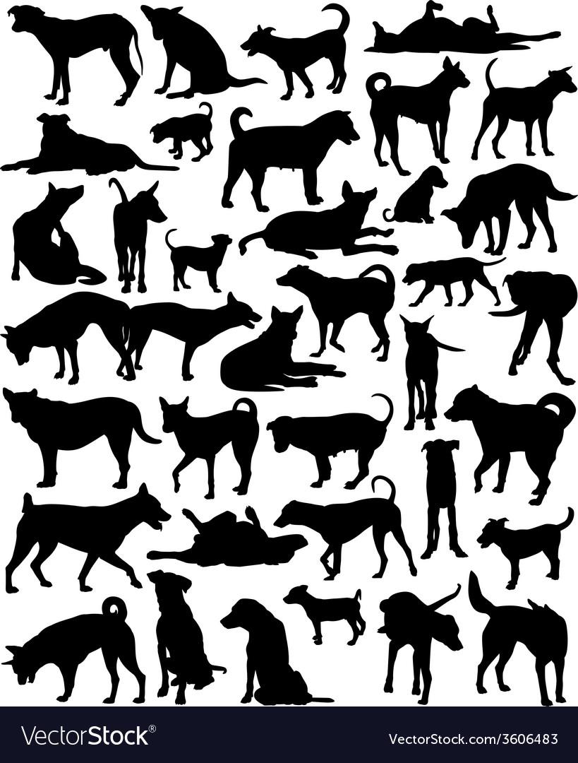 Street dogs vector | Price: 1 Credit (USD $1)