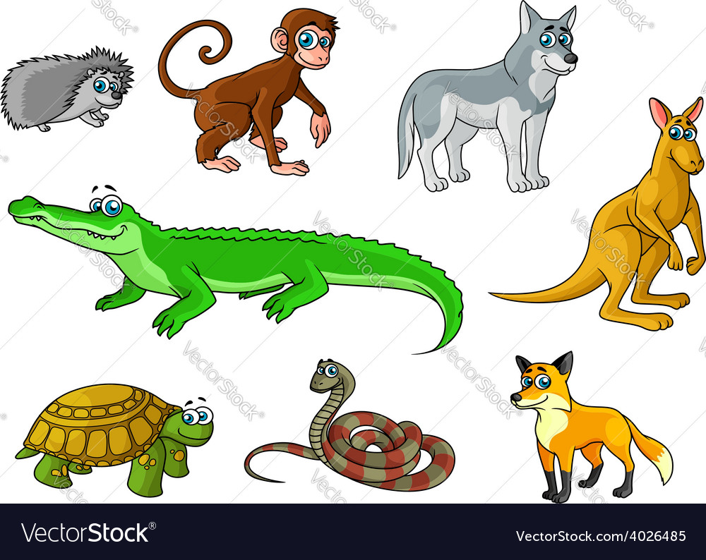 Cartoon forest and jungle wild animals vector | Price: 1 Credit (USD $1)