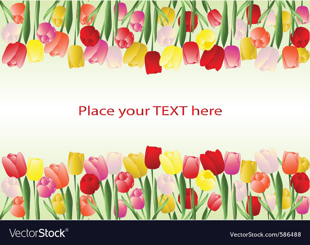 Tulips frame vector   Price: 1 Credit (USD $1)