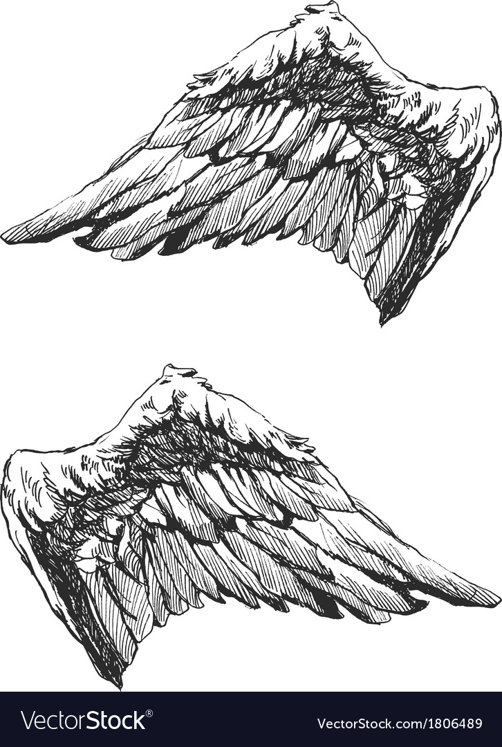 Hand drawn angel wings eps8 vector | Price: 1 Credit (USD $1)