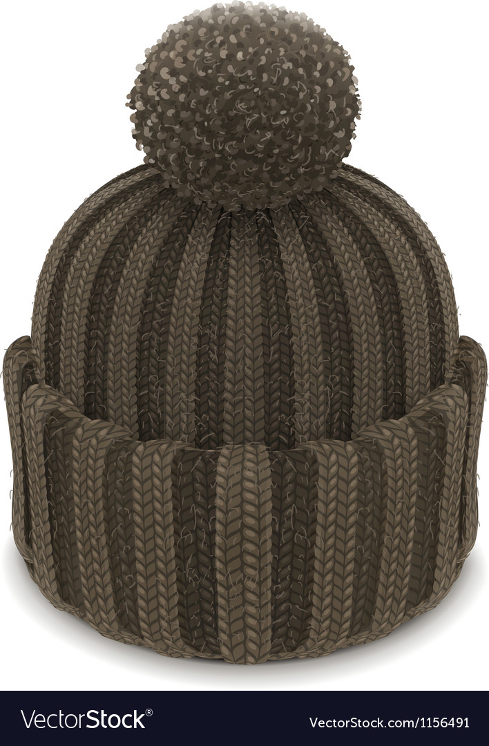 Winter knitted bubble hat vector | Price: 3 Credit (USD $3)