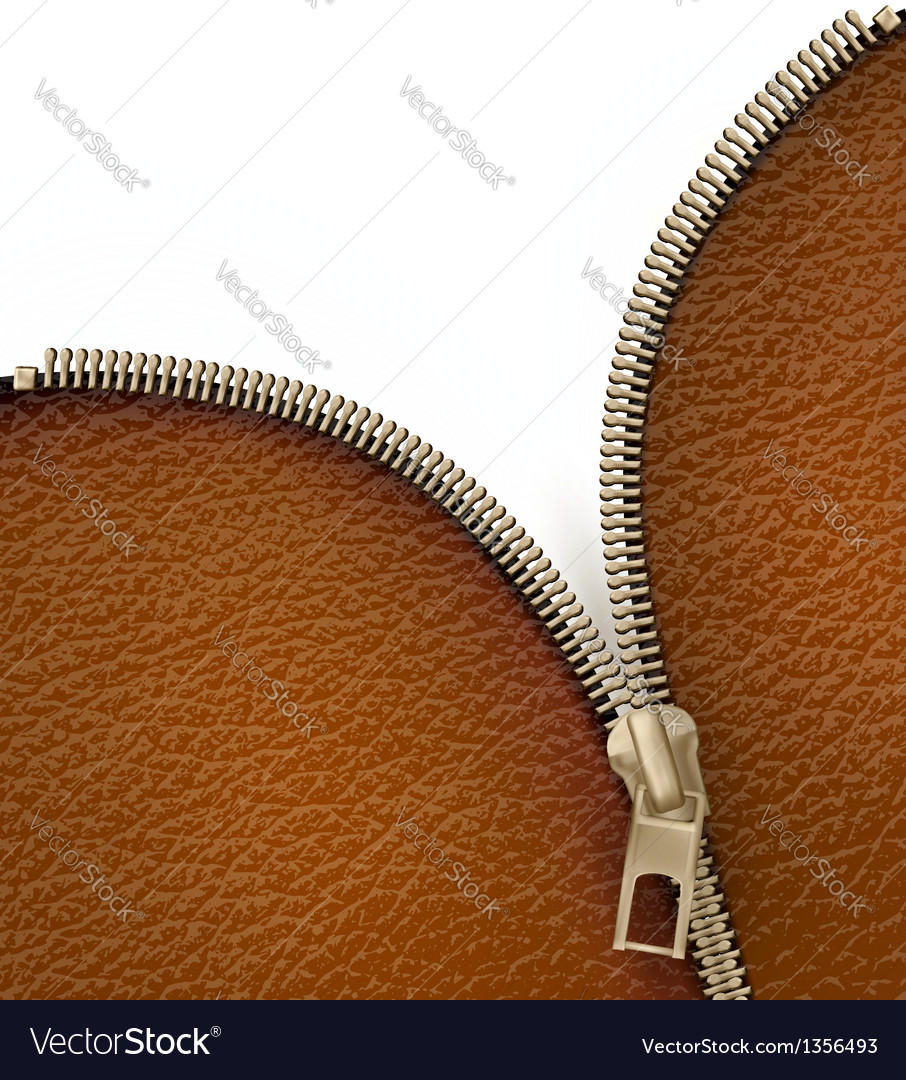Brown leather texture background with zipper vector | Price: 3 Credit (USD $3)