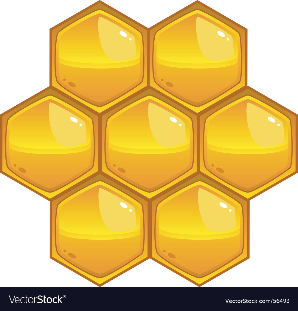 Honey vector | Price: 1 Credit (USD $1)