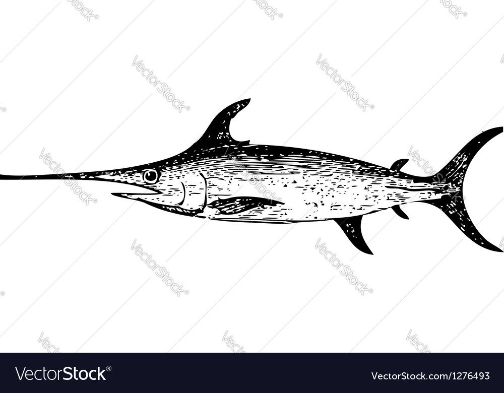 Old engraving of a swordfish vector | Price: 1 Credit (USD $1)