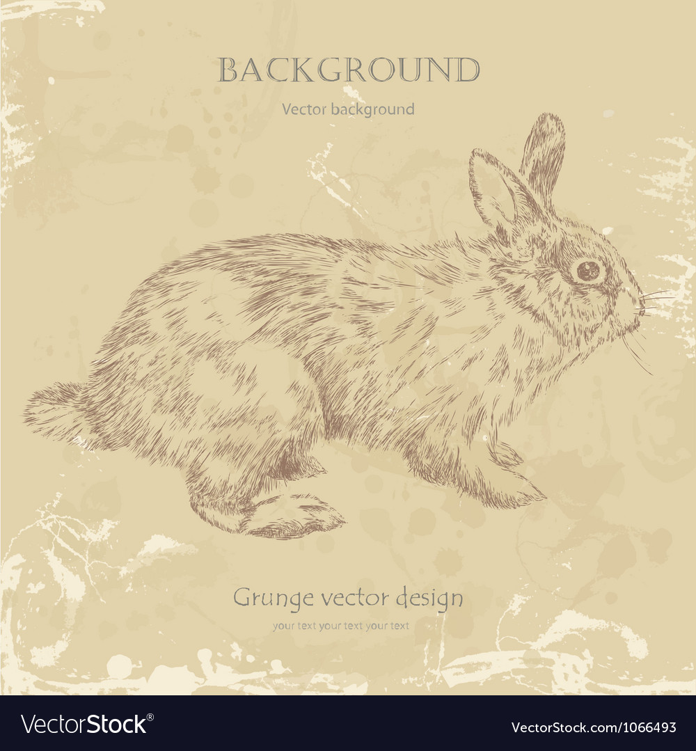 Vintage bunny vector | Price: 1 Credit (USD $1)