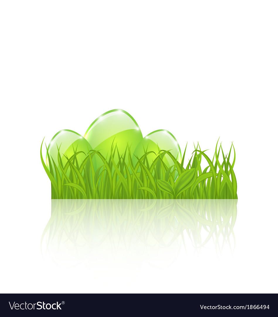 Easter set eggs in green grass isolated on white vector | Price: 1 Credit (USD $1)