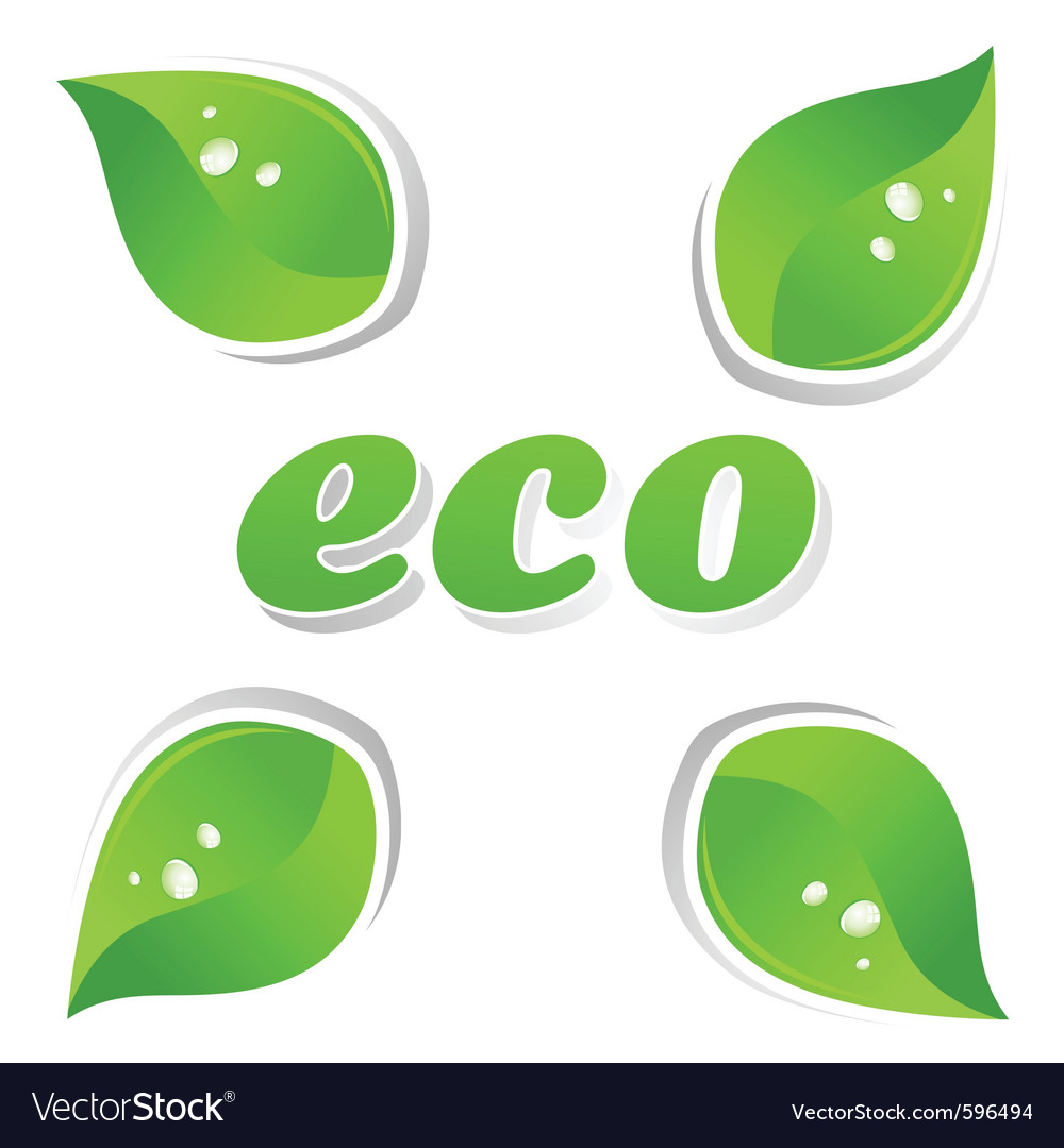 Ecology leafs vector | Price: 1 Credit (USD $1)