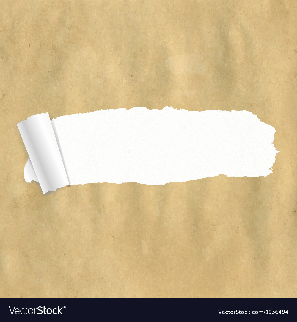 Package paper torn vector | Price: 1 Credit (USD $1)