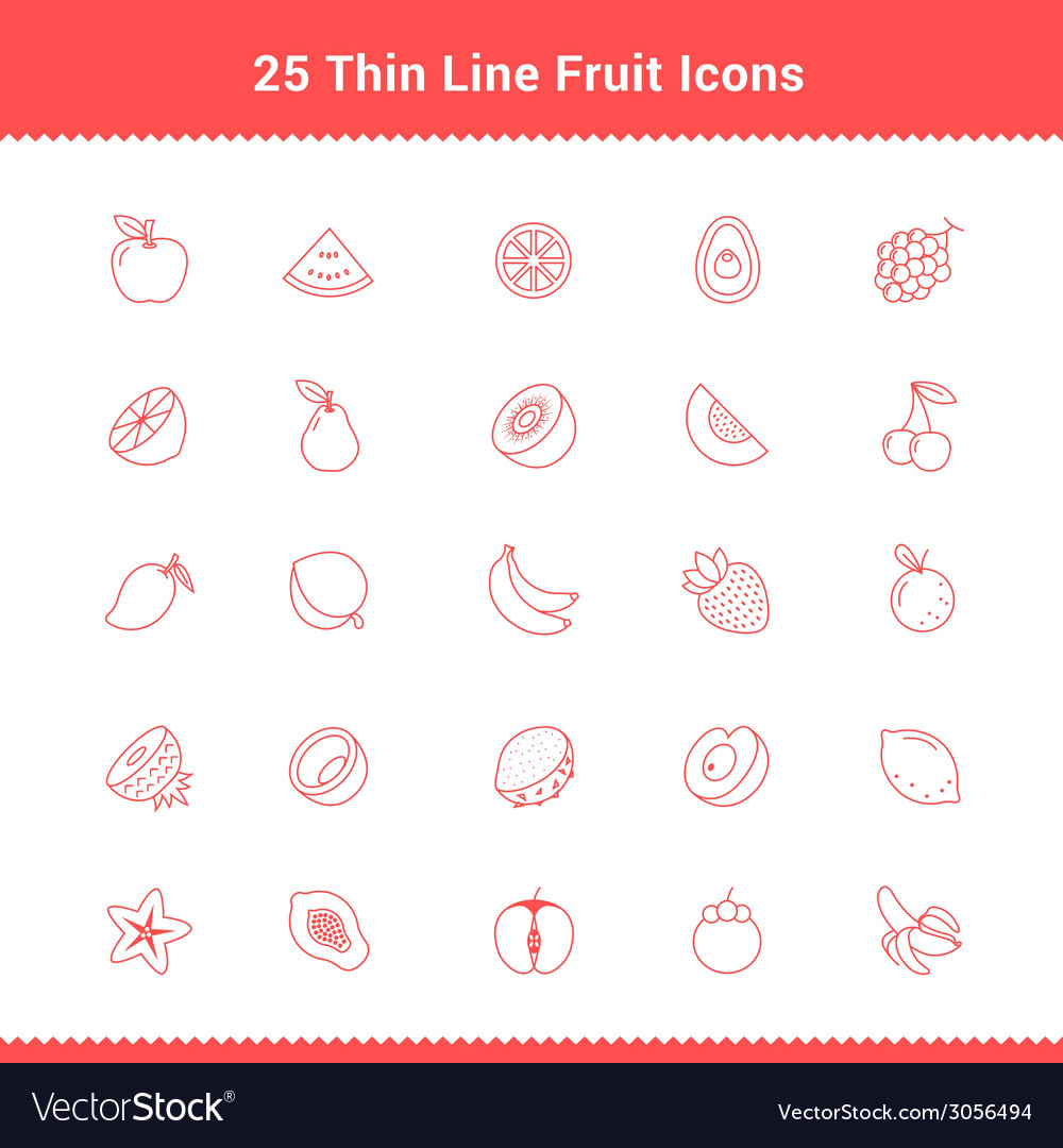 Set of thin line stroke fruit icon vector | Price: 1 Credit (USD $1)