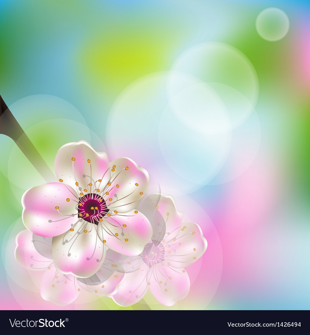 Spring flower vector | Price: 1 Credit (USD $1)