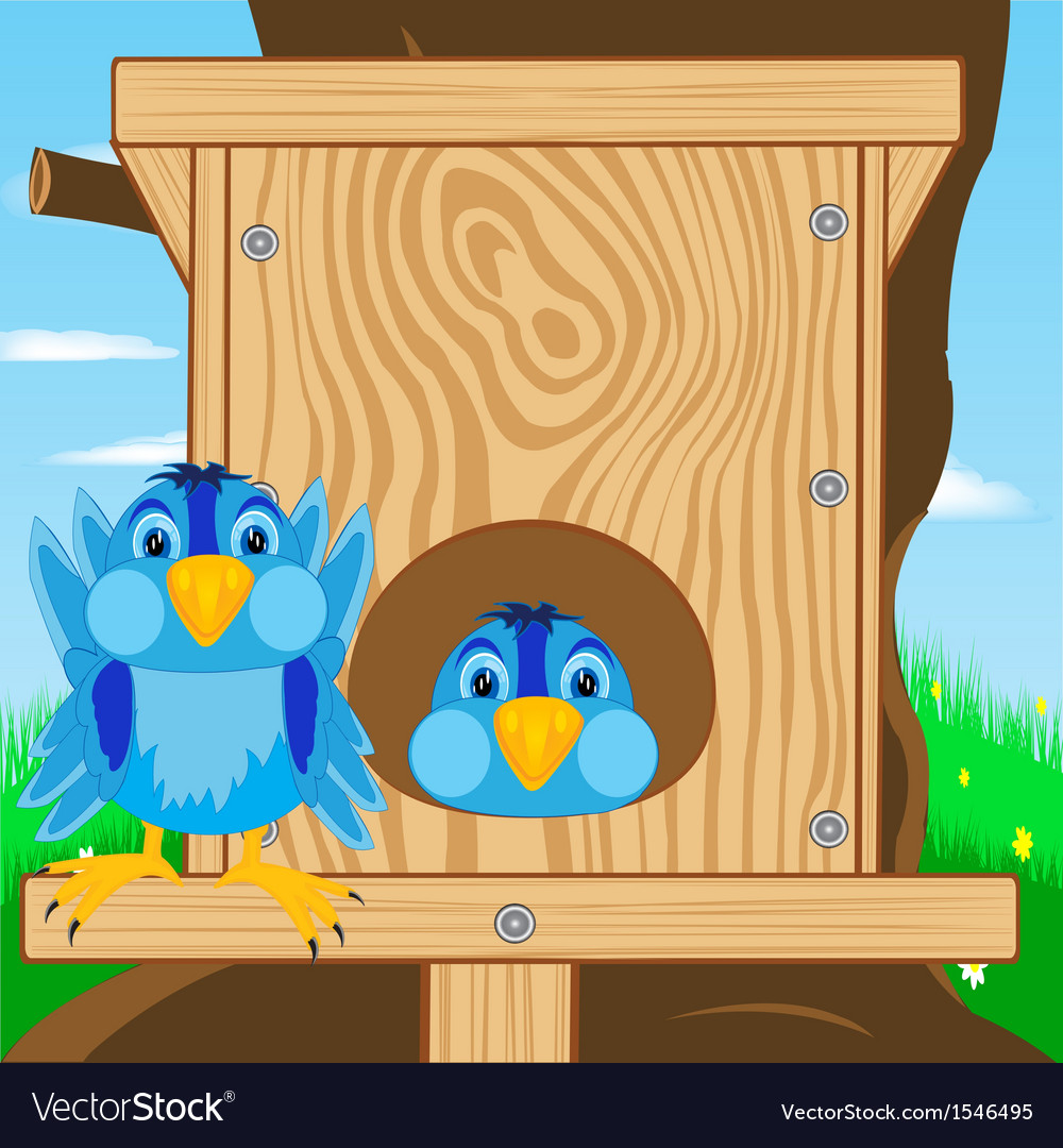 Bird sparrow and bird house vector | Price: 1 Credit (USD $1)