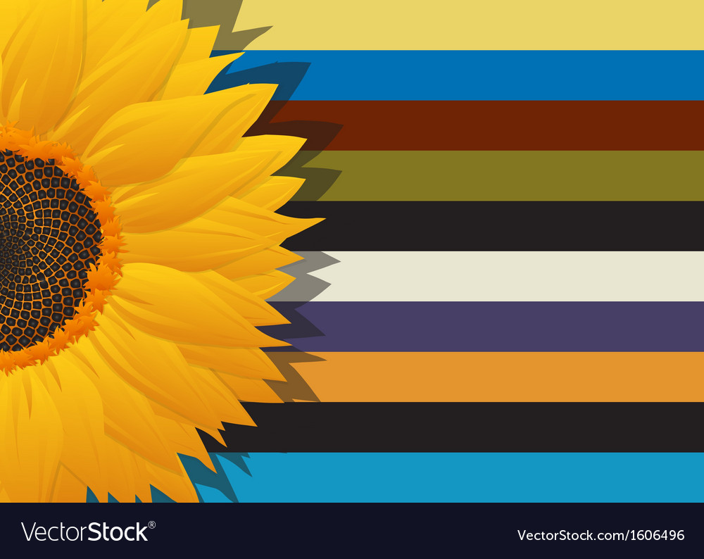 Sunflower abstract card vector | Price: 1 Credit (USD $1)