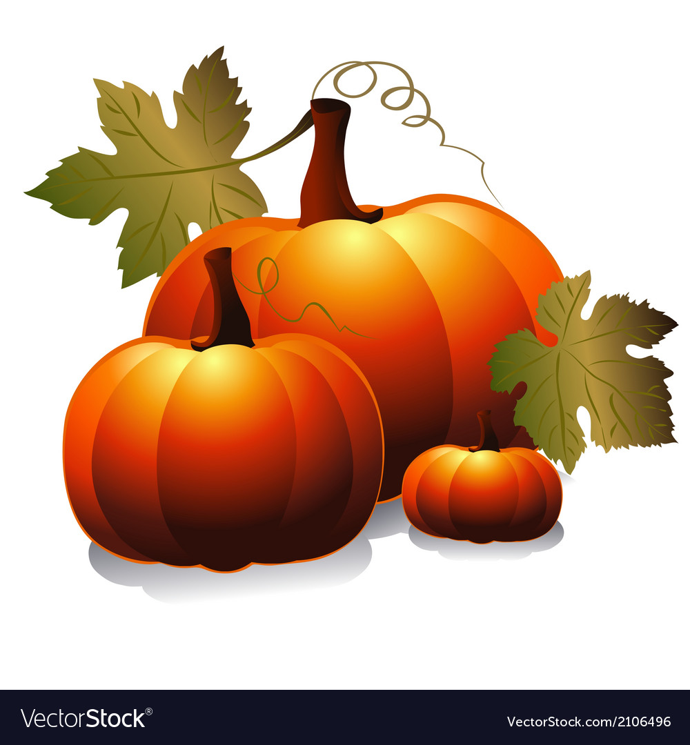 Three pumpkin vector | Price: 1 Credit (USD $1)