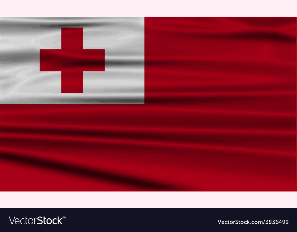 Flag of tonga with old texture vector | Price: 1 Credit (USD $1)