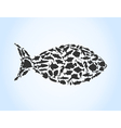 Fish of fishes vector