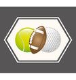 Sports balls vector