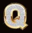 Q bling bling vector