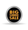 Big summer sale icon vector