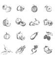 Vegetables berries and fruits vector