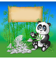 Panda sitting in bamboo branches and holding vector
