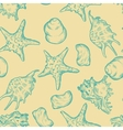 Sea shells pattern background vector