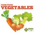 Farm fresh vegetables vector