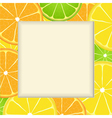 Citrus fruit frame background vector