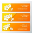 Set of three card with paper flower vector