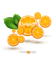 Background with oranges vector
